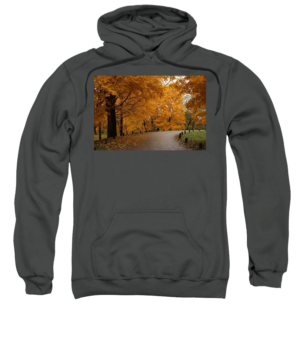 Leaves Sweatshirt featuring the photograph Around The Bend by Lyle Hatch