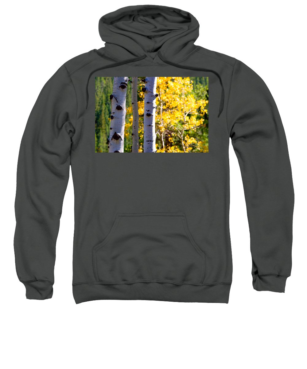 Aspens Sweatshirt featuring the photograph Aspen Color by James BO Insogna