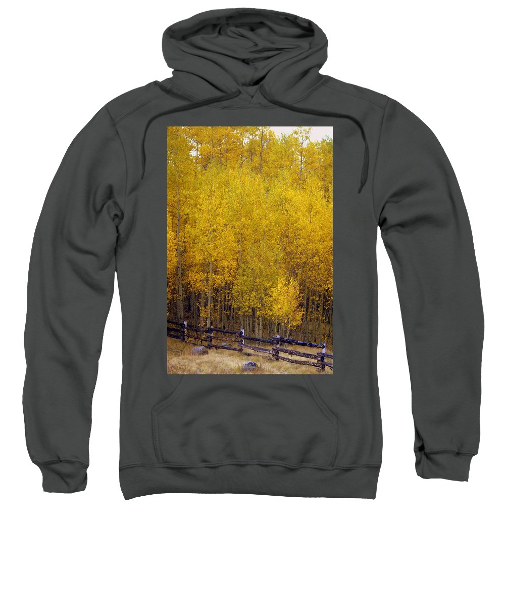 Fall Colors Sweatshirt featuring the photograph Aspen Fall 2 by Marty Koch