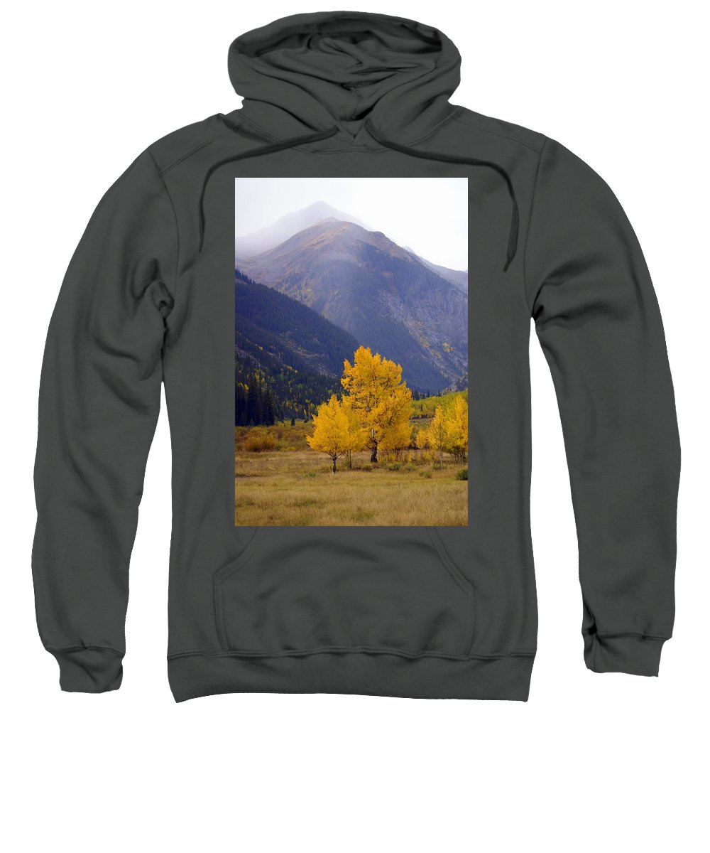 Fall Colors Sweatshirt featuring the photograph Aspen Fall 4 by Marty Koch