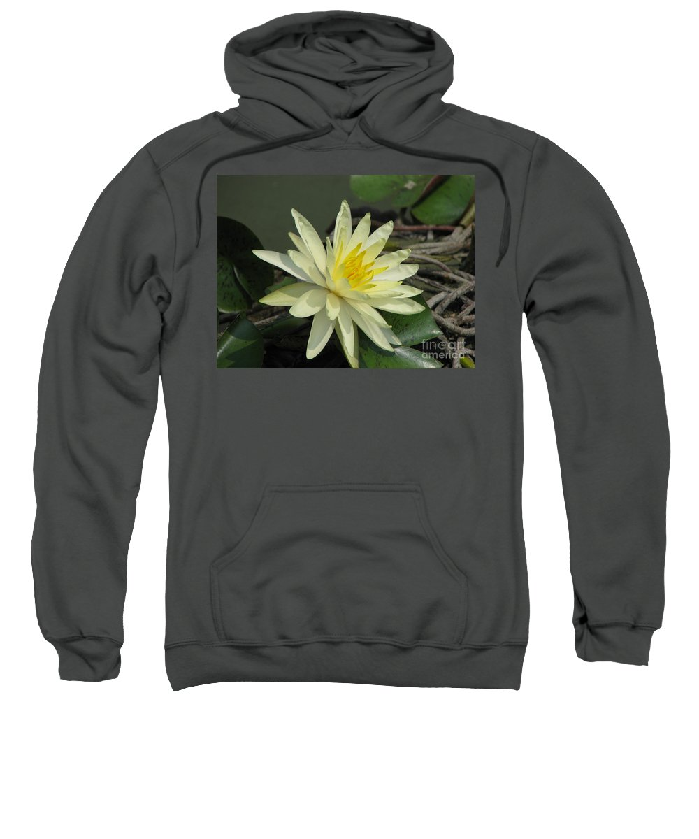 Lilly Sweatshirt featuring the photograph At The Pond by Amanda Barcon