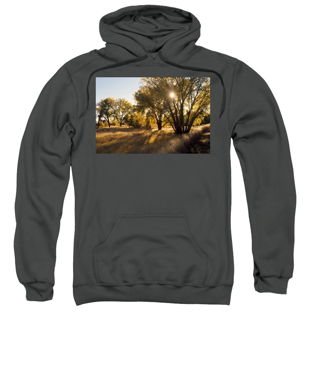 Fall Sweatshirt featuring the photograph Autum Sunburst by Jerry McElroy