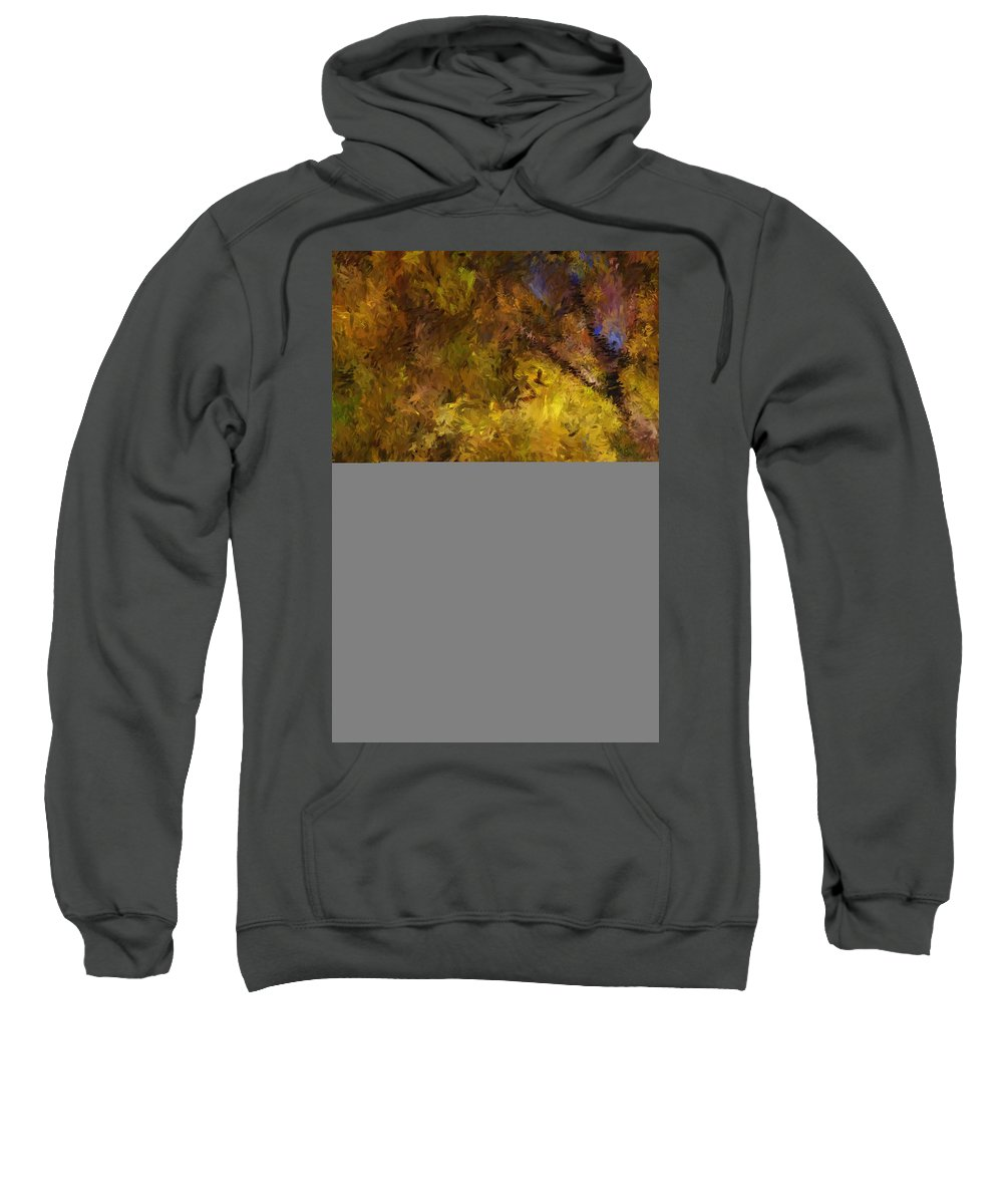 Abstract Digital Painting Sweatshirt featuring the digital art Autumn Abstract by David Lane