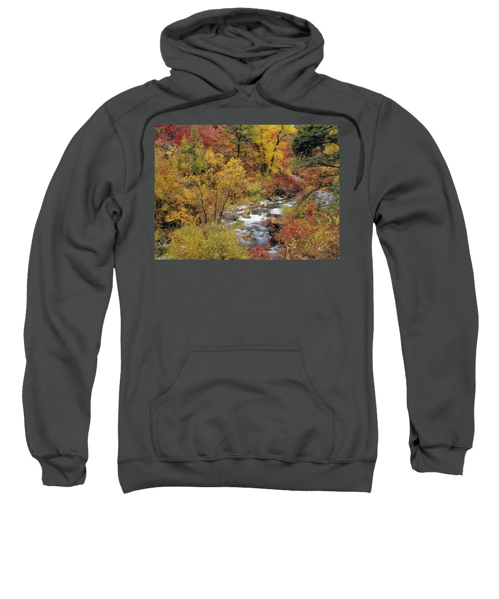 Idaho Sweatshirt featuring the photograph Autumn Color by Leland D Howard