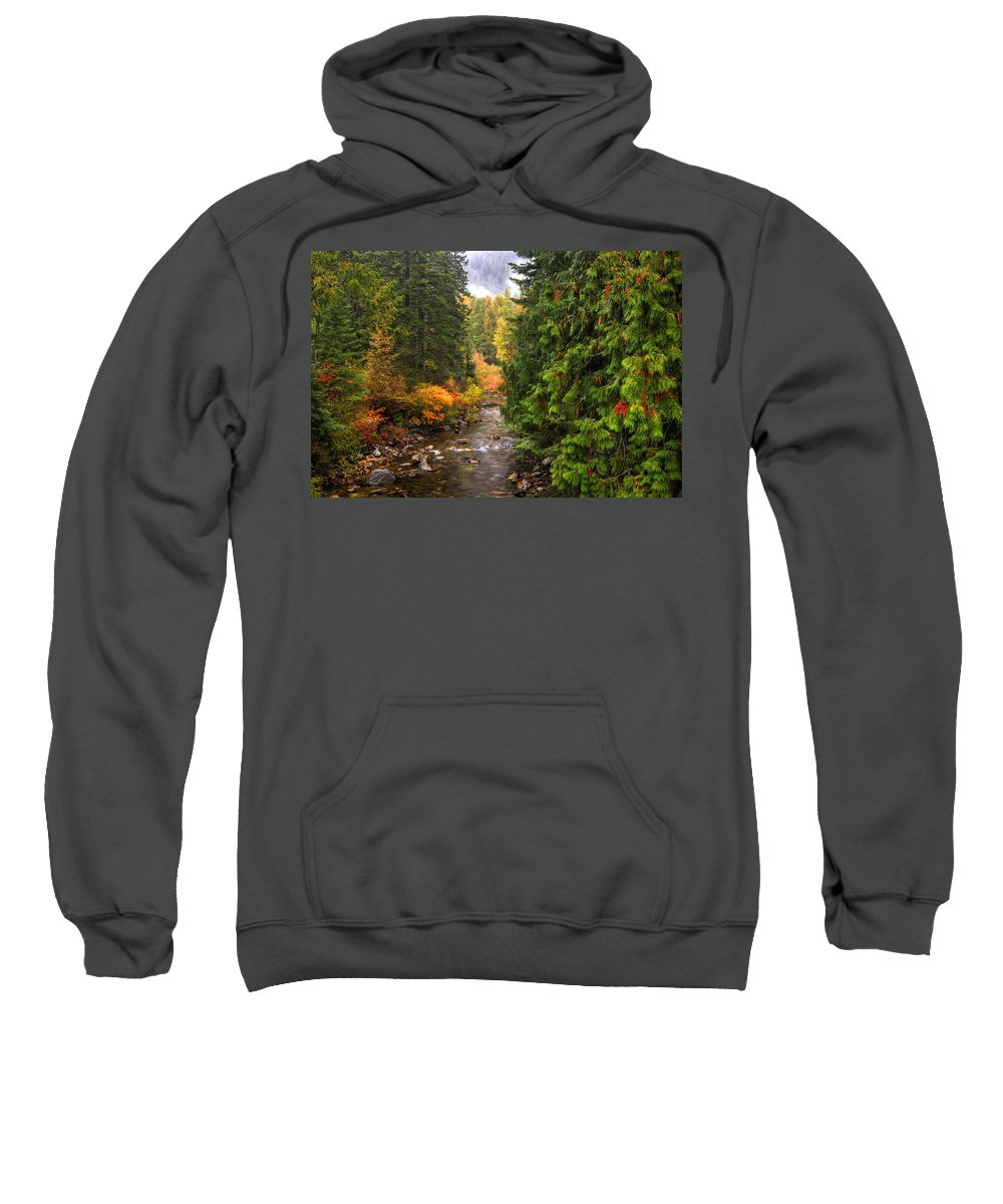 Autumn Sweatshirt featuring the photograph Autumn Creations by Eggers Photography