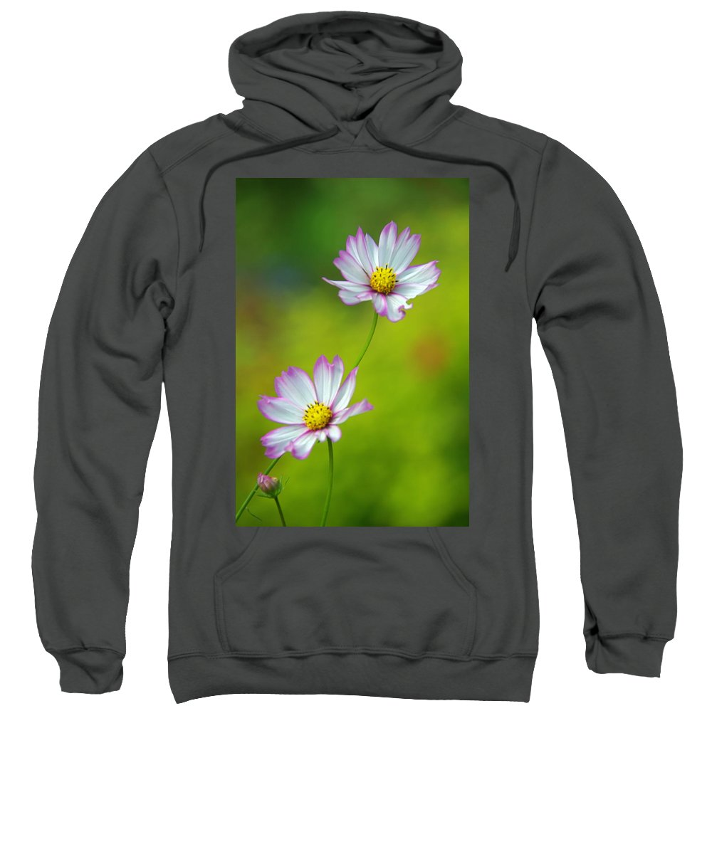 Flowers Sweatshirt featuring the photograph Autumn Flowers by Byron Varvarigos
