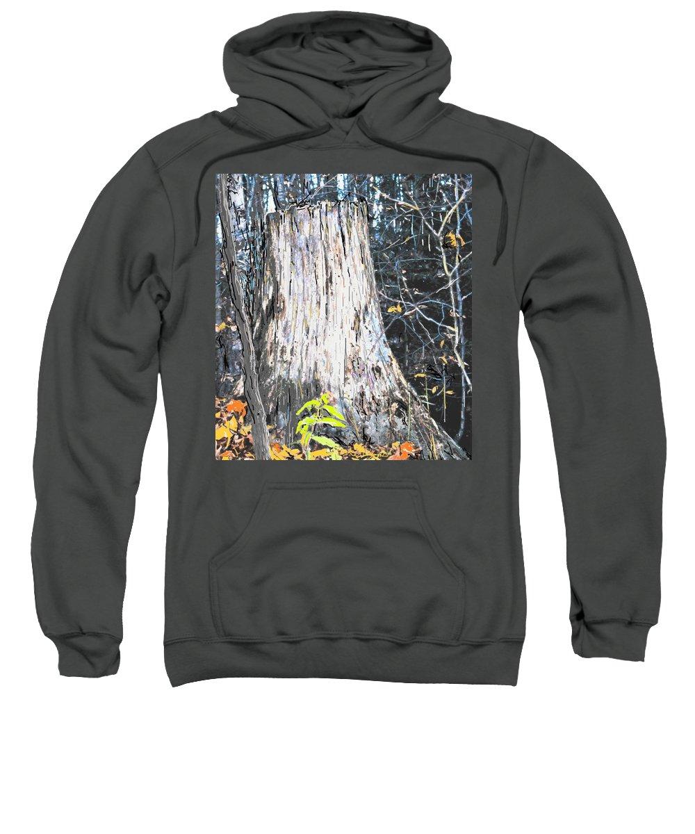 Fall Sweatshirt featuring the photograph Autumn by Ian MacDonald