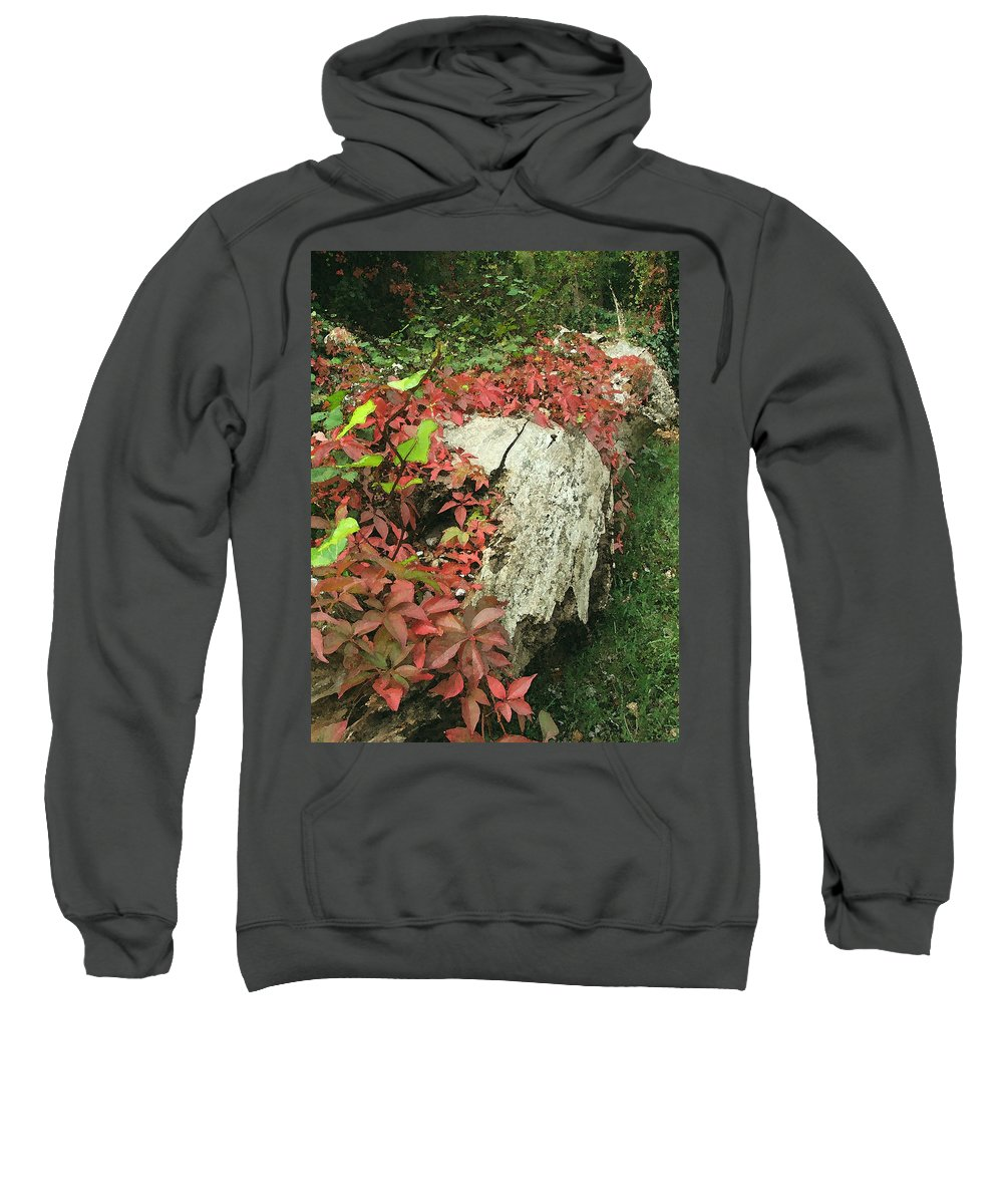 Hampstead Sweatshirt featuring the photograph Autumn In Hampstead by Heather Lennox