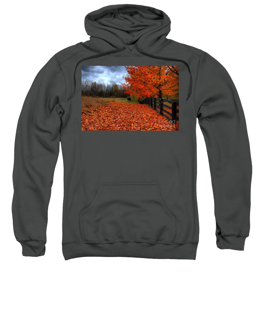 Autumn Sweatshirt featuring the photograph Autumn Leaves by Joe Ng