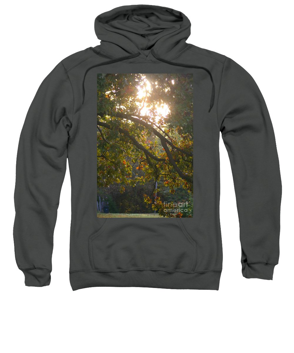 Autumn Sweatshirt featuring the photograph Autumn Morning Glow by Nadine Rippelmeyer