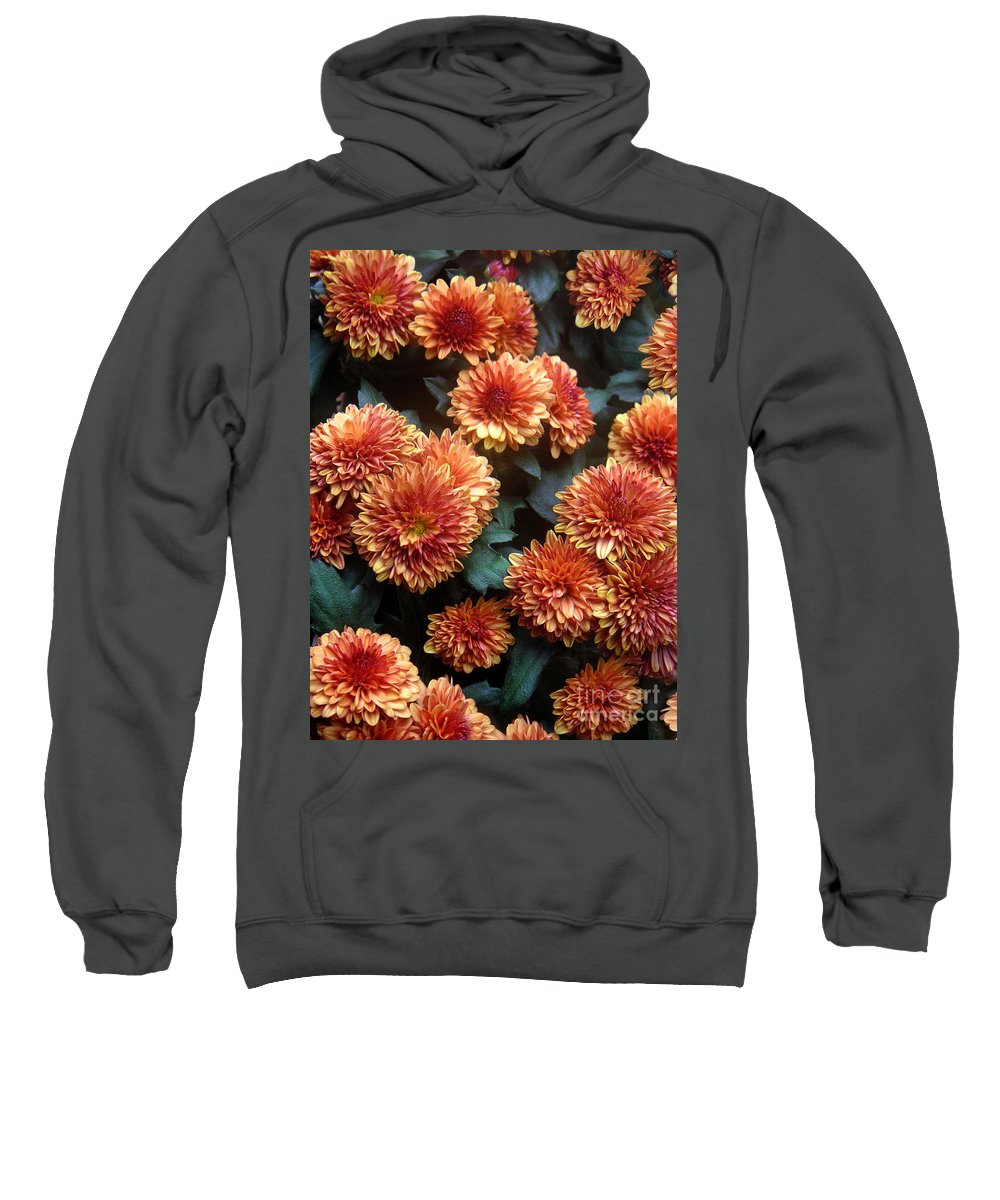 Nature Sweatshirt featuring the photograph Autumn Mums - A Group Portrait by Lucyna A M Green