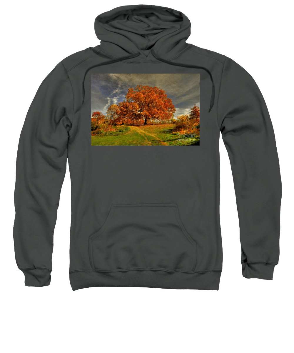 Autumn Sweatshirt featuring the photograph Autumn Picnic On The Hill by Lois Bryan