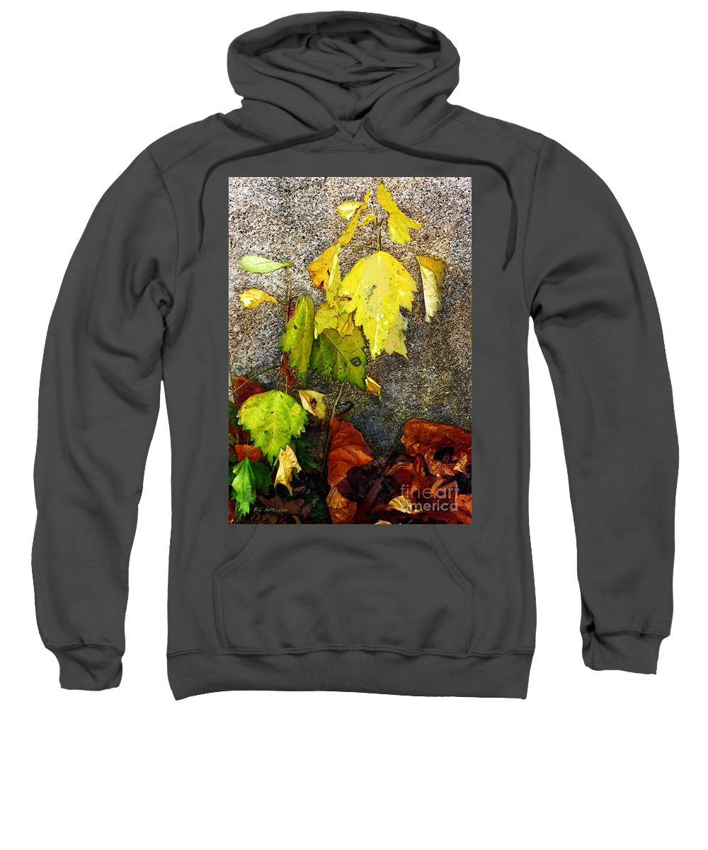 Autumn Sweatshirt featuring the painting Autumn Rainbow by RC DeWinter