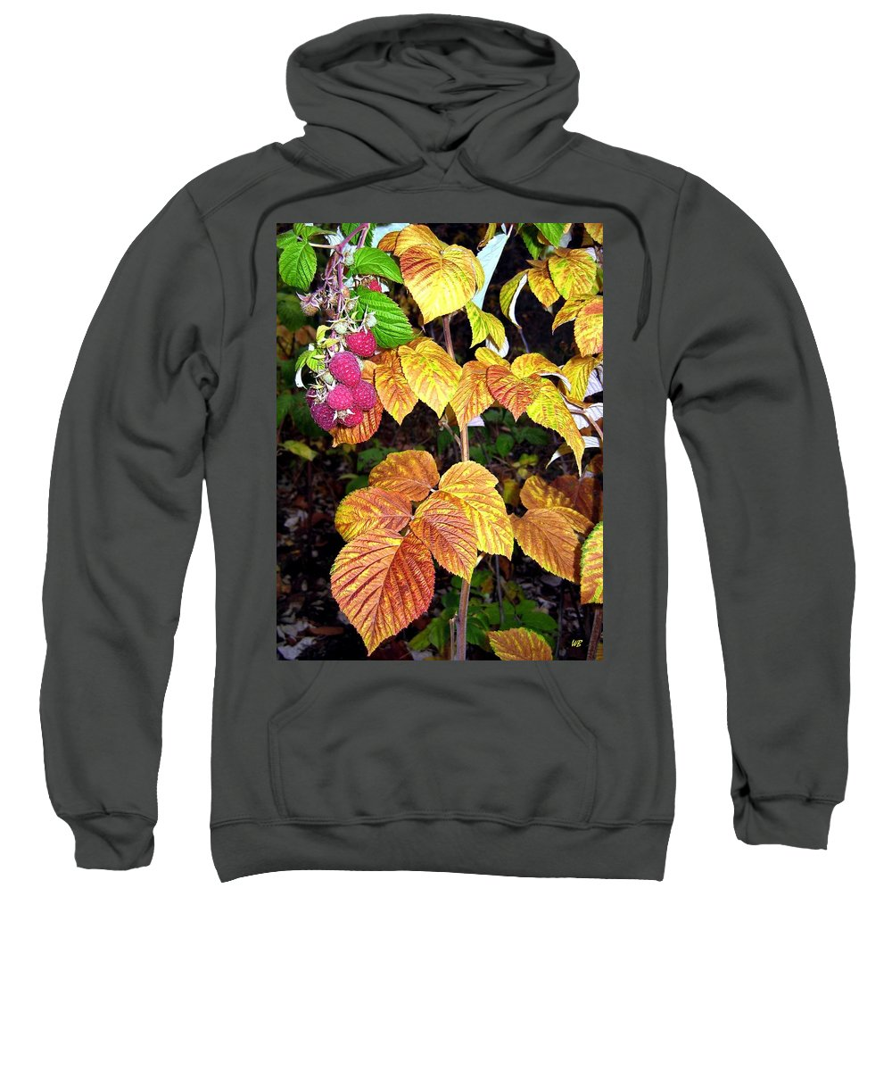 Autumn Sweatshirt featuring the photograph Autumn Raspberries by Will Borden