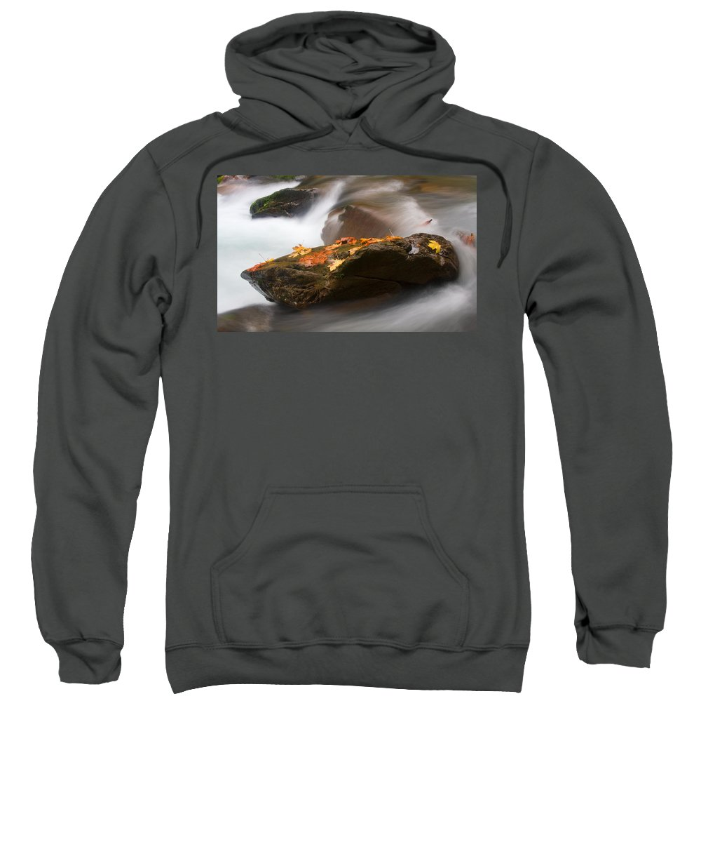 Leaves Sweatshirt featuring the photograph Autumn Resting Place by Mike Dawson