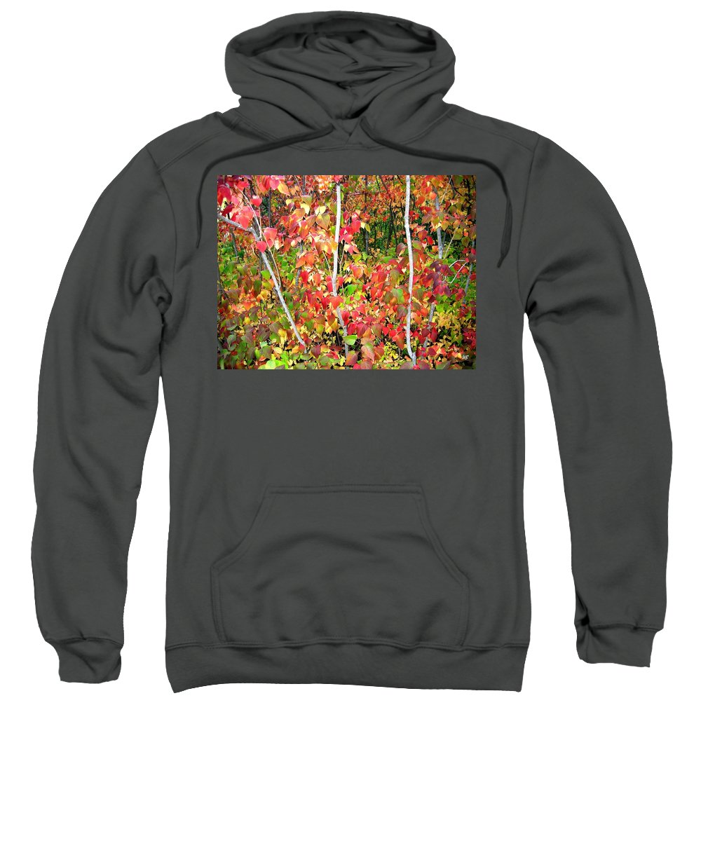 Autumn Sweatshirt featuring the photograph Autumn Sanctuary by Will Borden