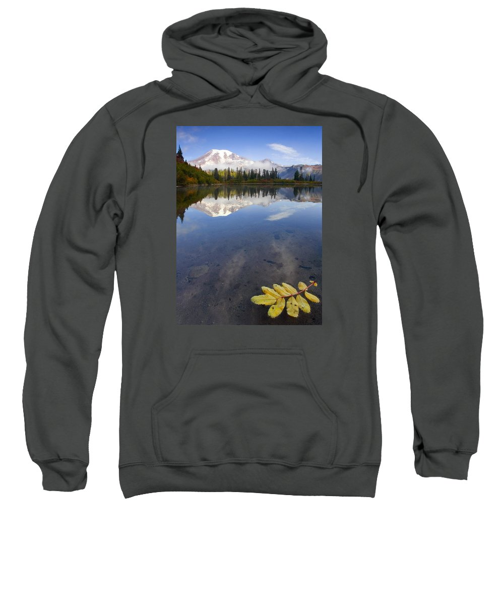 Rainier Sweatshirt featuring the photograph Autumn Suspended by Mike Dawson