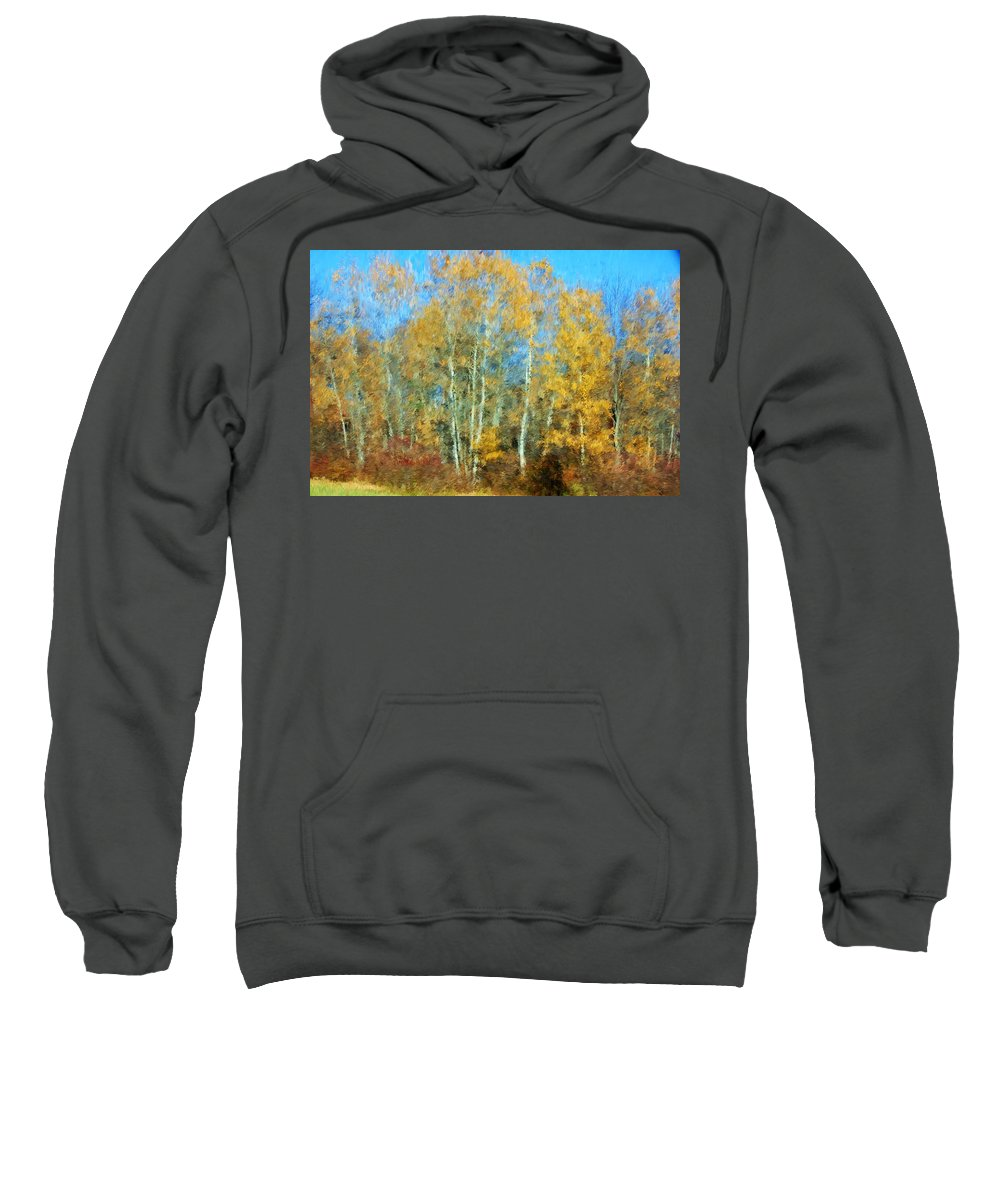 Sweatshirt featuring the photograph Autumn Woodlot by David Lane