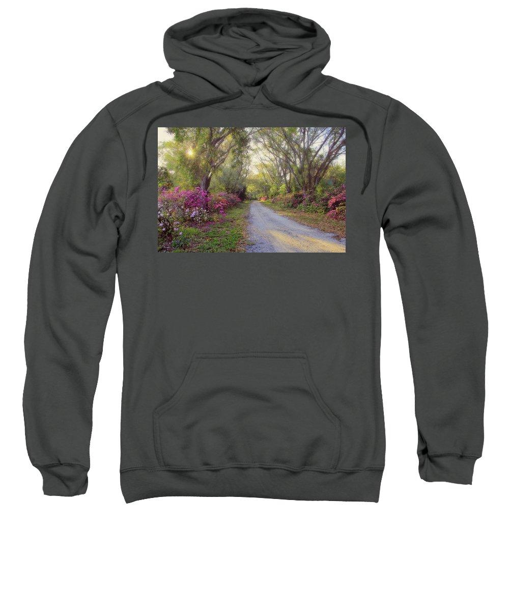 Azalea Sweatshirt featuring the photograph Azalea Lane By H H Photography Of Florida by HH Photography of Florida