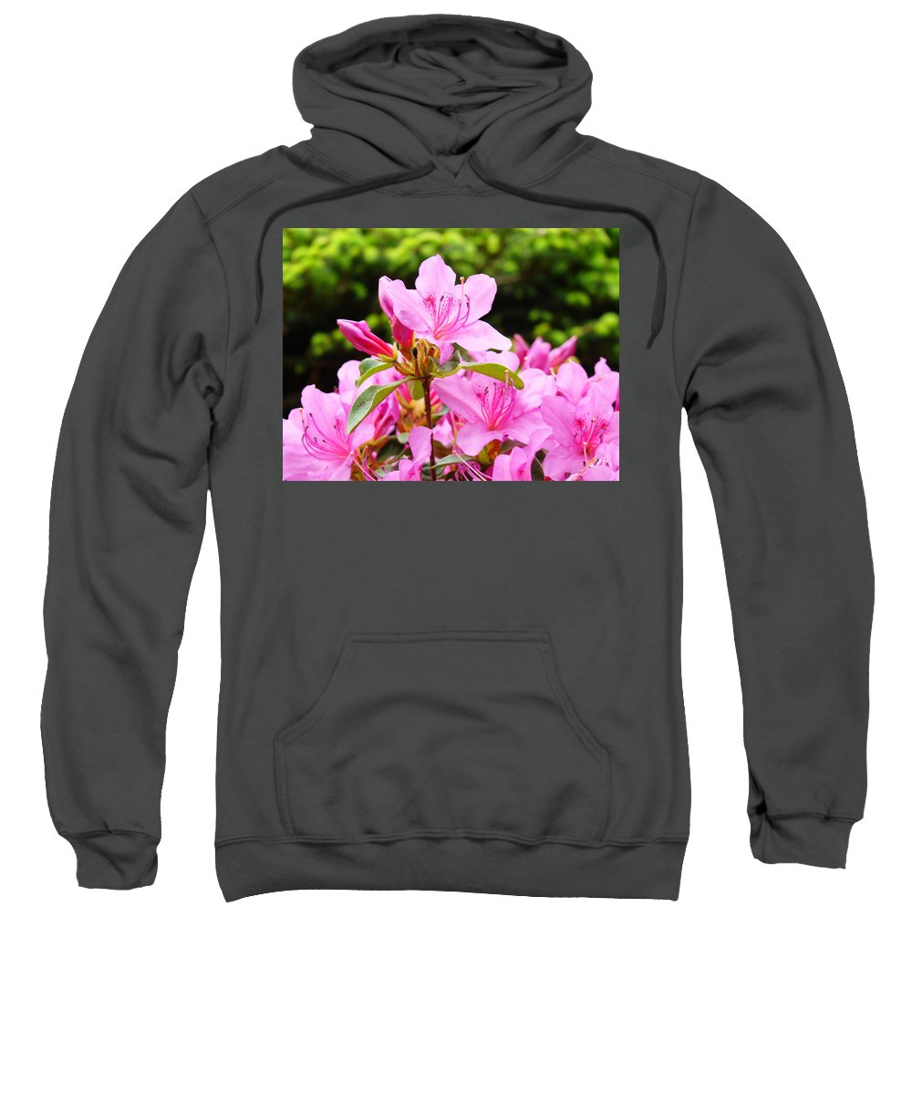 �azaleas Artwork� Sweatshirt featuring the photograph Azaleas Pink Azalea Flowers Artwork 12 Landscape Art Prints by Baslee Troutman