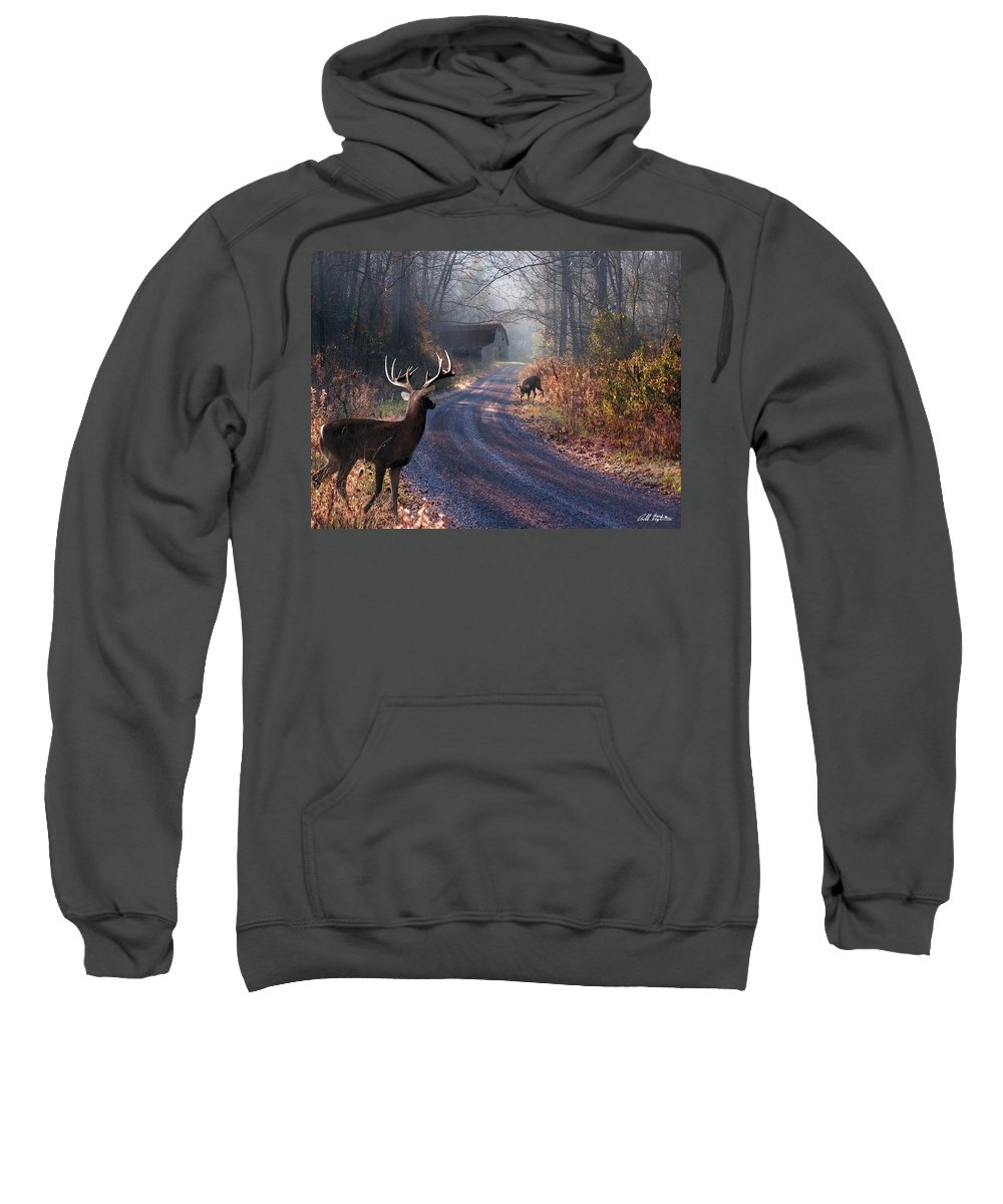 Deer Sweatshirt featuring the digital art Back Home by Bill Stephens