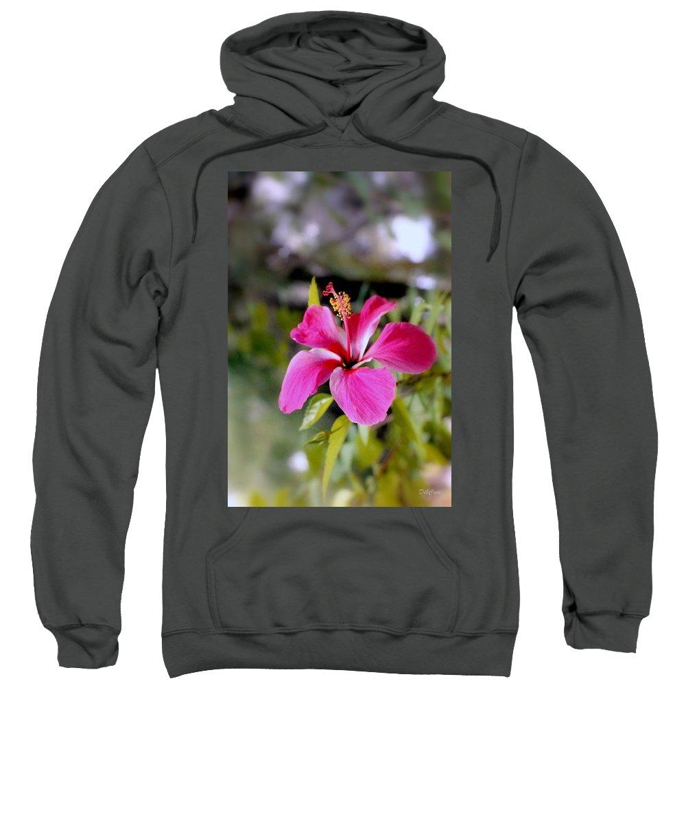 Flowers Sweatshirt featuring the photograph Bahamian Flower by Deborah Crew-Johnson