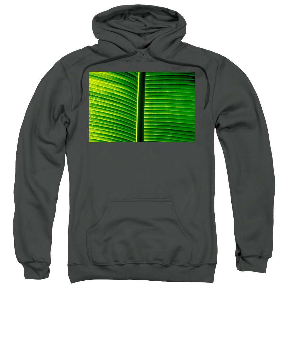 Banana Leaf Sweatshirt featuring the photograph Banana Leaf I by Totto Ponce