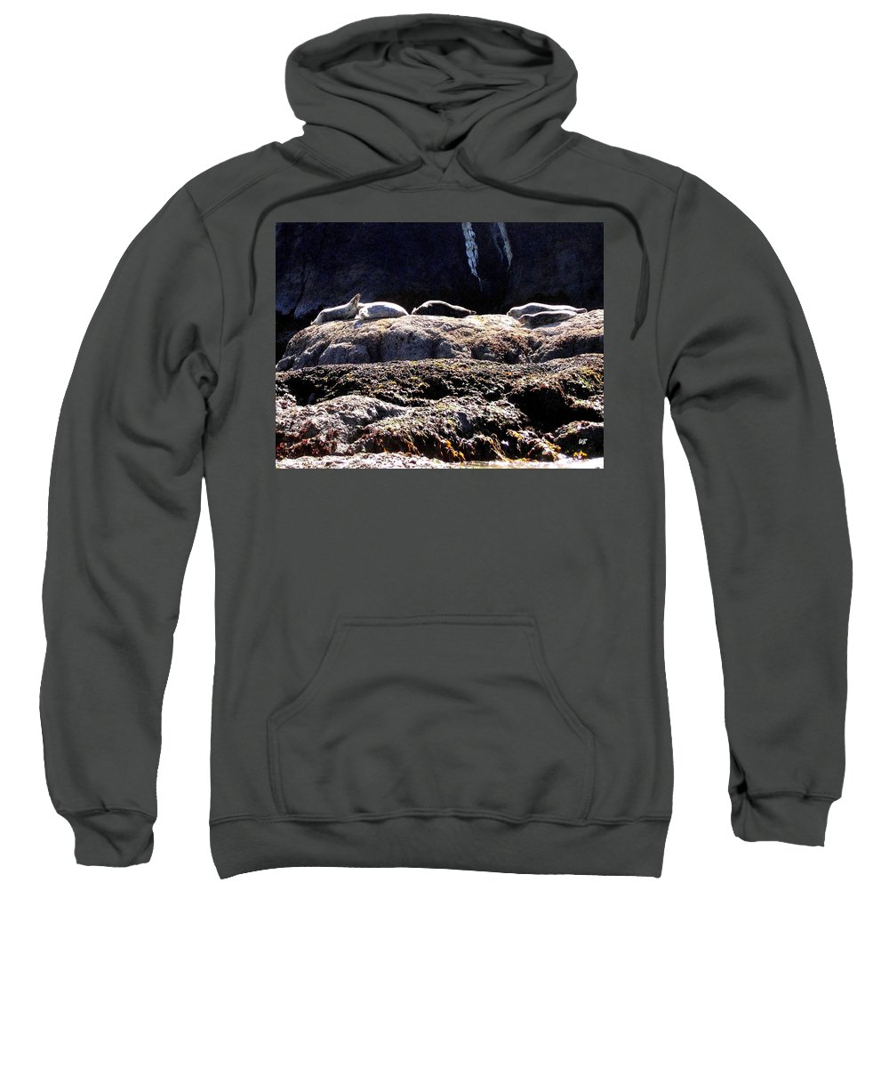 Bandon Sweatshirt featuring the photograph Bandon 11 by Will Borden