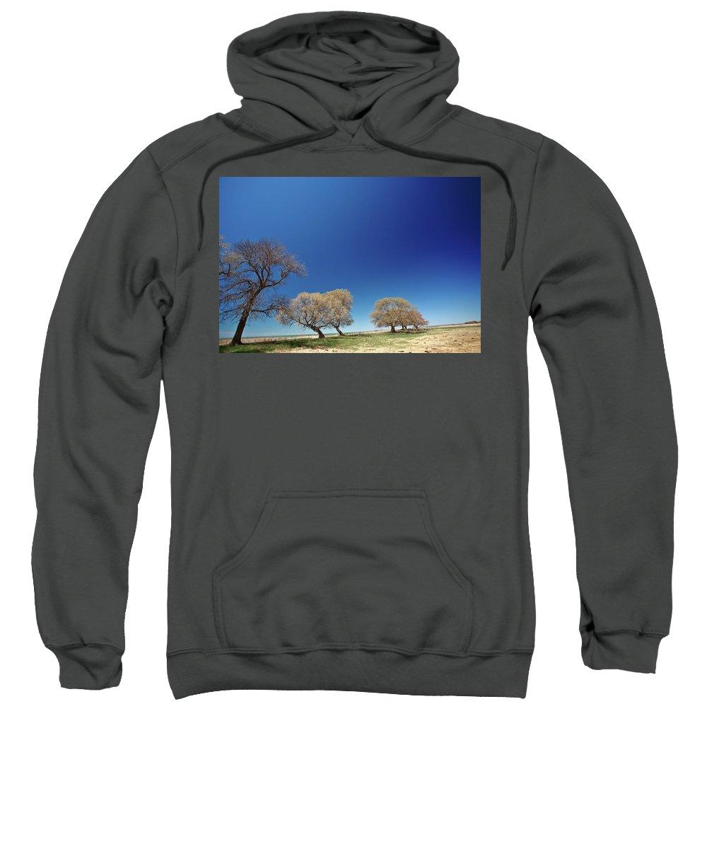 Bare Sweatshirt featuring the digital art Bare Trees Along Shore Of Lake Manitoba by Mark Duffy