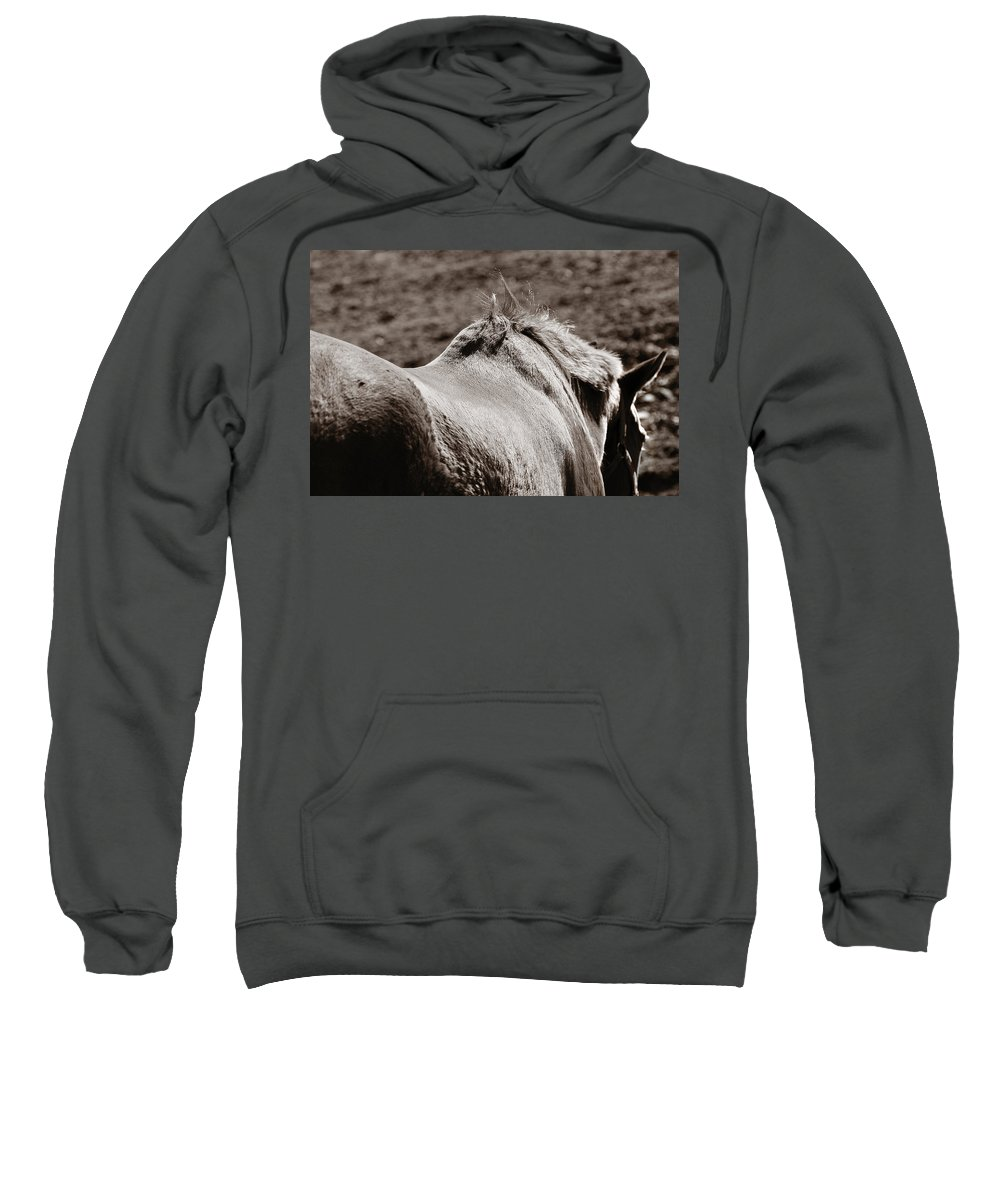 Horse Sweatshirt featuring the photograph Bareback by Angela Rath