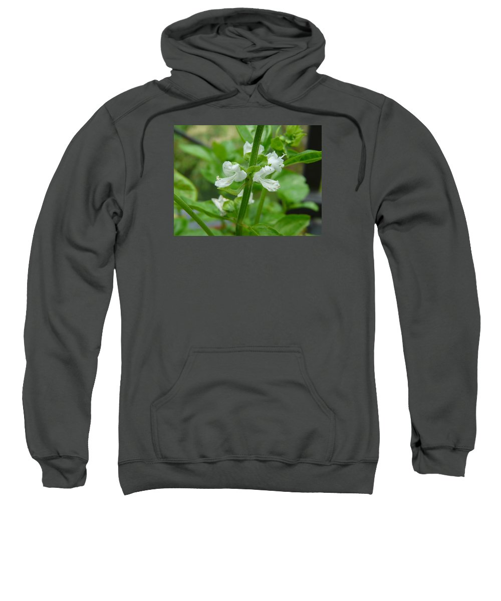 Plant Sweatshirt featuring the photograph Basil Blossom by Valerie Ornstein