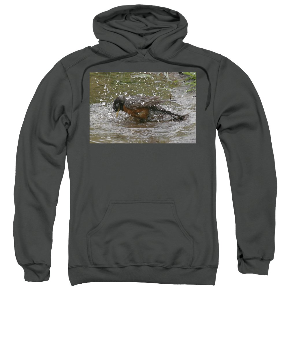 Robin Bird Sweatshirt featuring the photograph Bath Time by Robert Pearson
