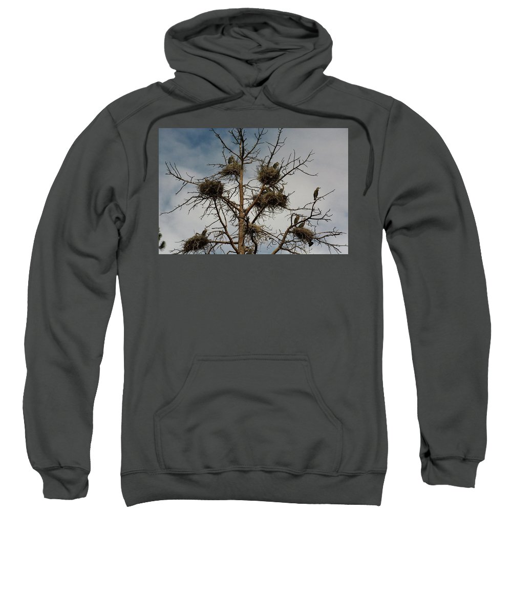 Sweatshirt featuring the photograph Be Aware by Glen Baker