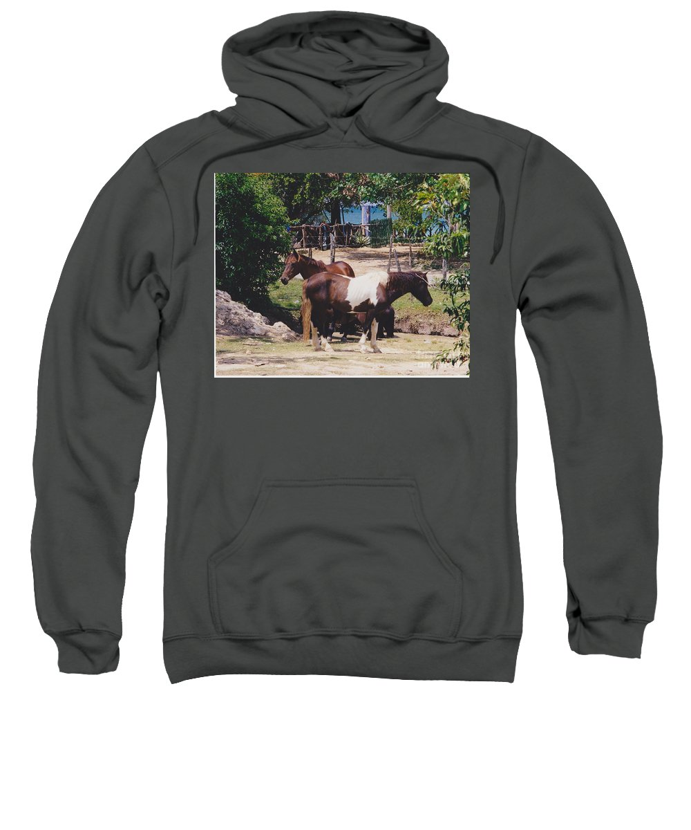 Horses Sweatshirt featuring the photograph Beach Horses by Michelle Powell