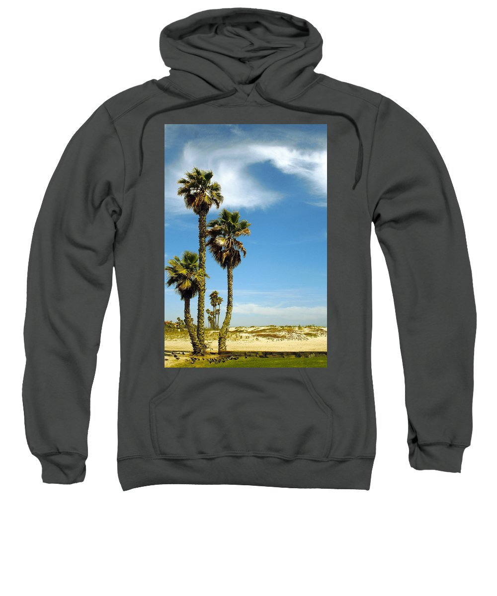 Palm Tree Sweatshirt featuring the photograph Beach View With Palms And Birds by Ben and Raisa Gertsberg