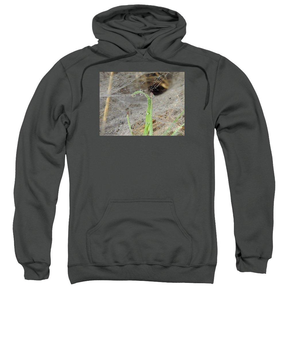 Grass Sweatshirt featuring the photograph Beaded Web by Luke George