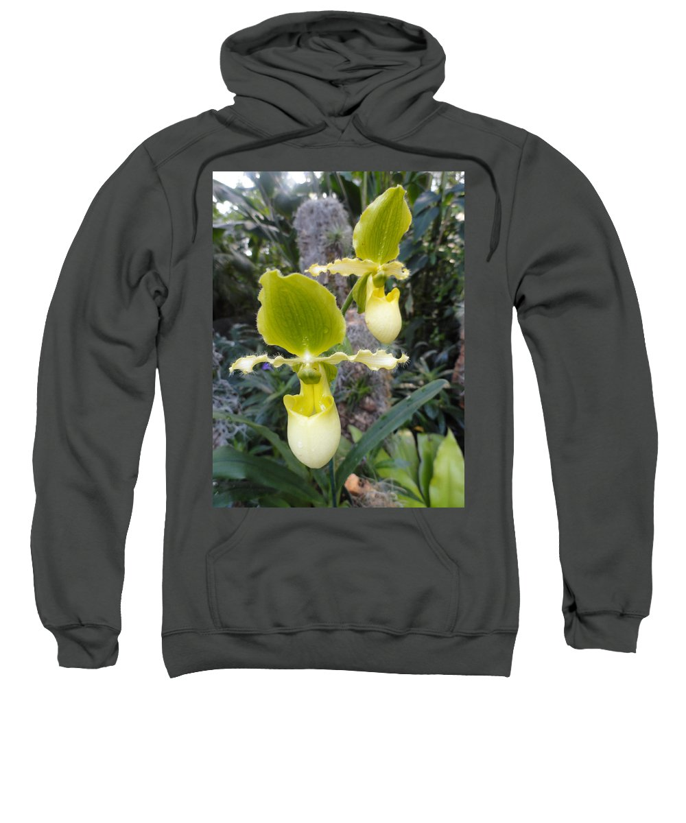 Orchids Sweatshirt featuring the photograph Bearded Ladies by Trish Hale