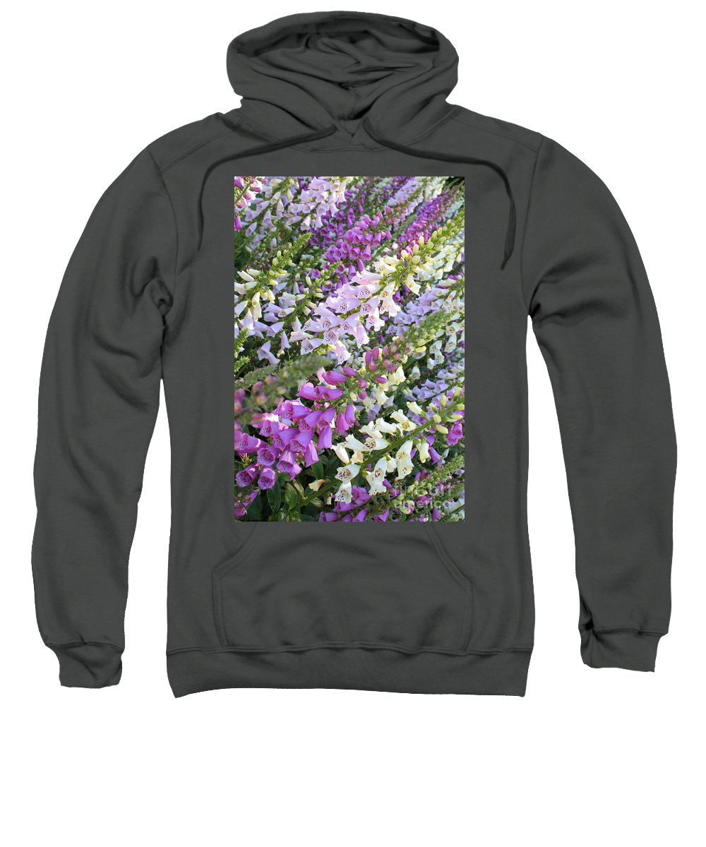 Foxglove Sweatshirt featuring the photograph Beautiful Foxglove by Carol Groenen