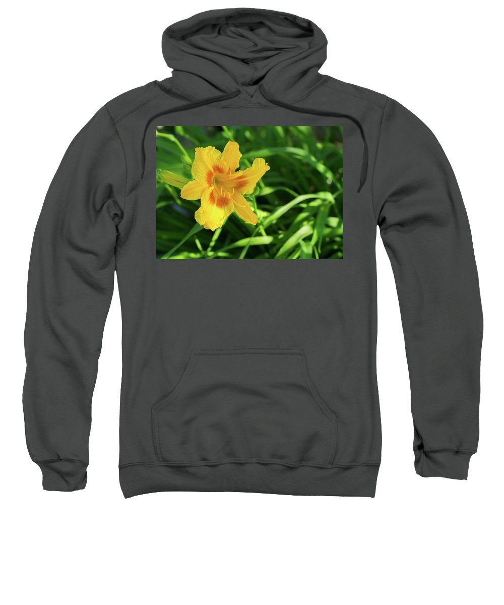 Olga Olay Sweatshirt featuring the photograph Beautiful Lily by Olga Olay