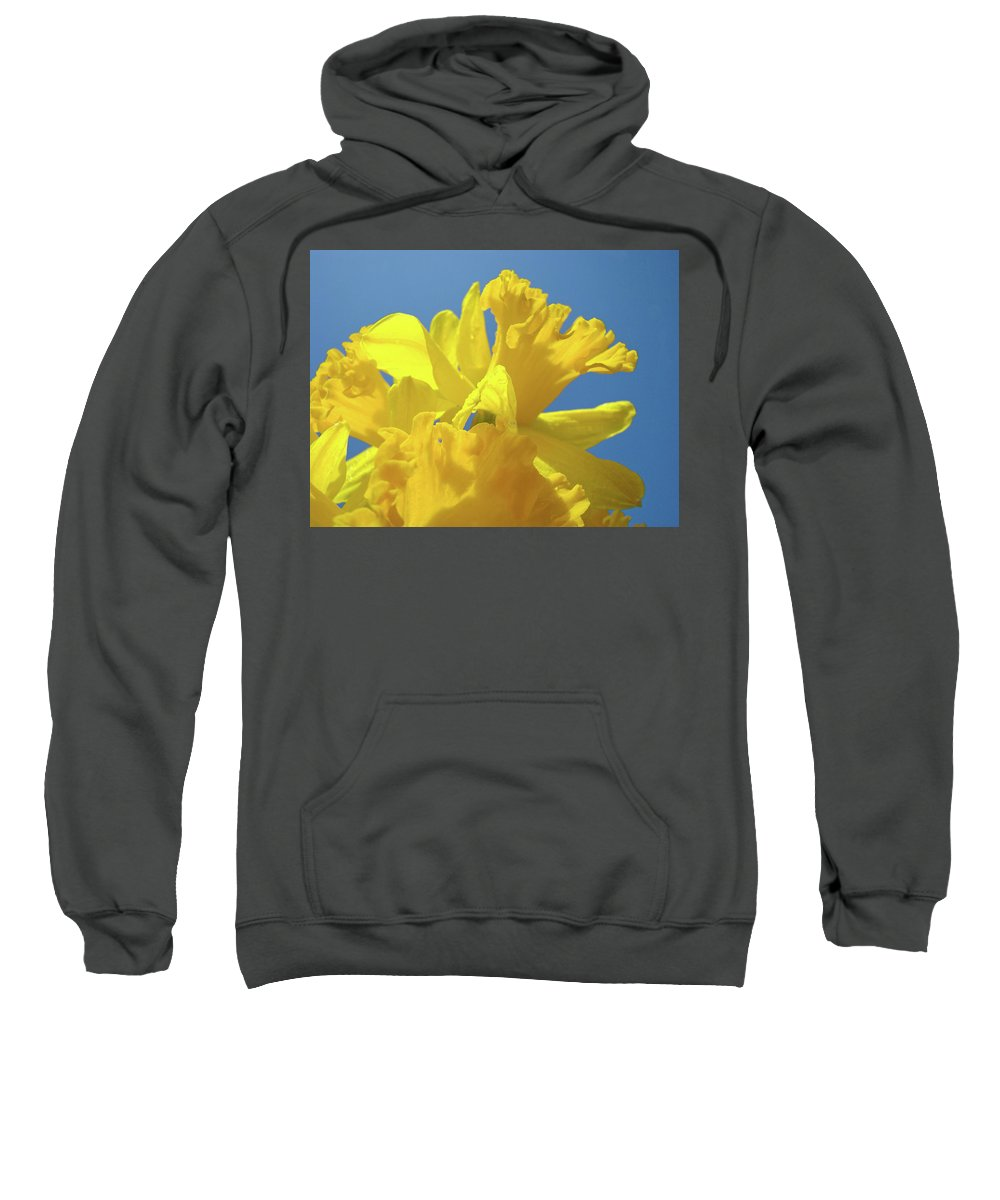 Nature Sweatshirt featuring the photograph Beautiful Spring Daffodil Bouquet Flowers Blue Sky Art Prints Baslee Troutman by Baslee Troutman
