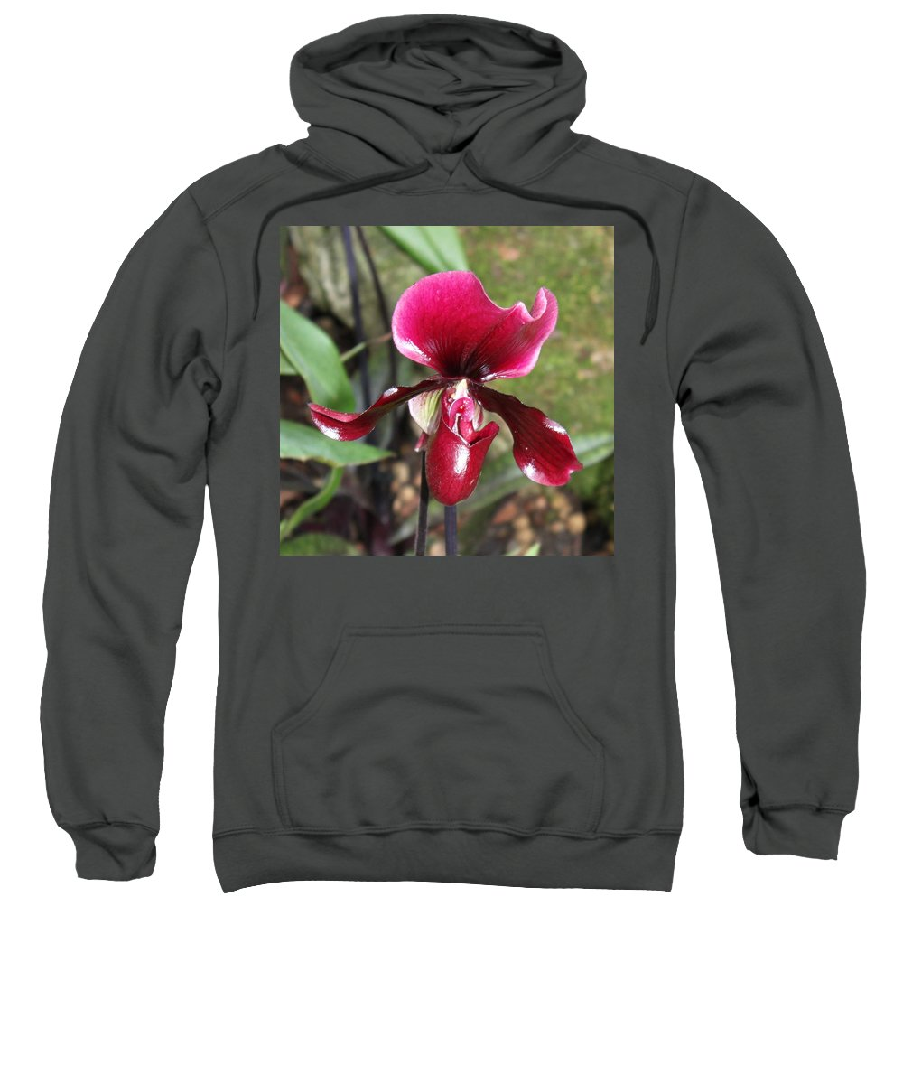 Orchid Sweatshirt featuring the photograph Beautiful Temptation 2 by Ibolya Taligas
