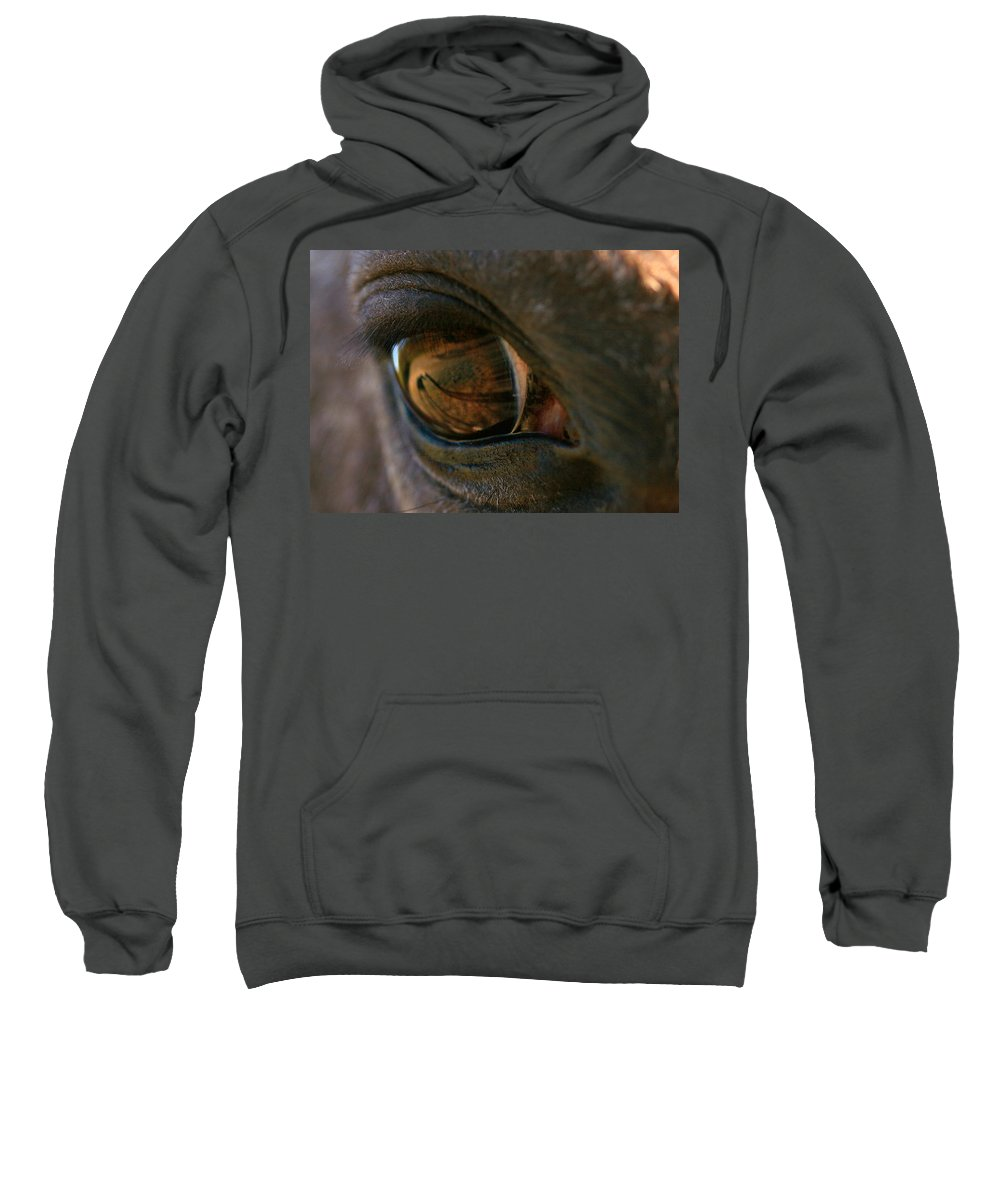 Shadow Sweatshirt featuring the photograph Beauty Is In The Eye Of The Beholder by Angela Rath