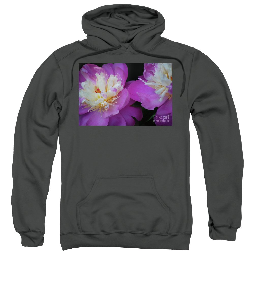 Peony Sweatshirt featuring the photograph Beauty Is What We Do by Lori Tambakis