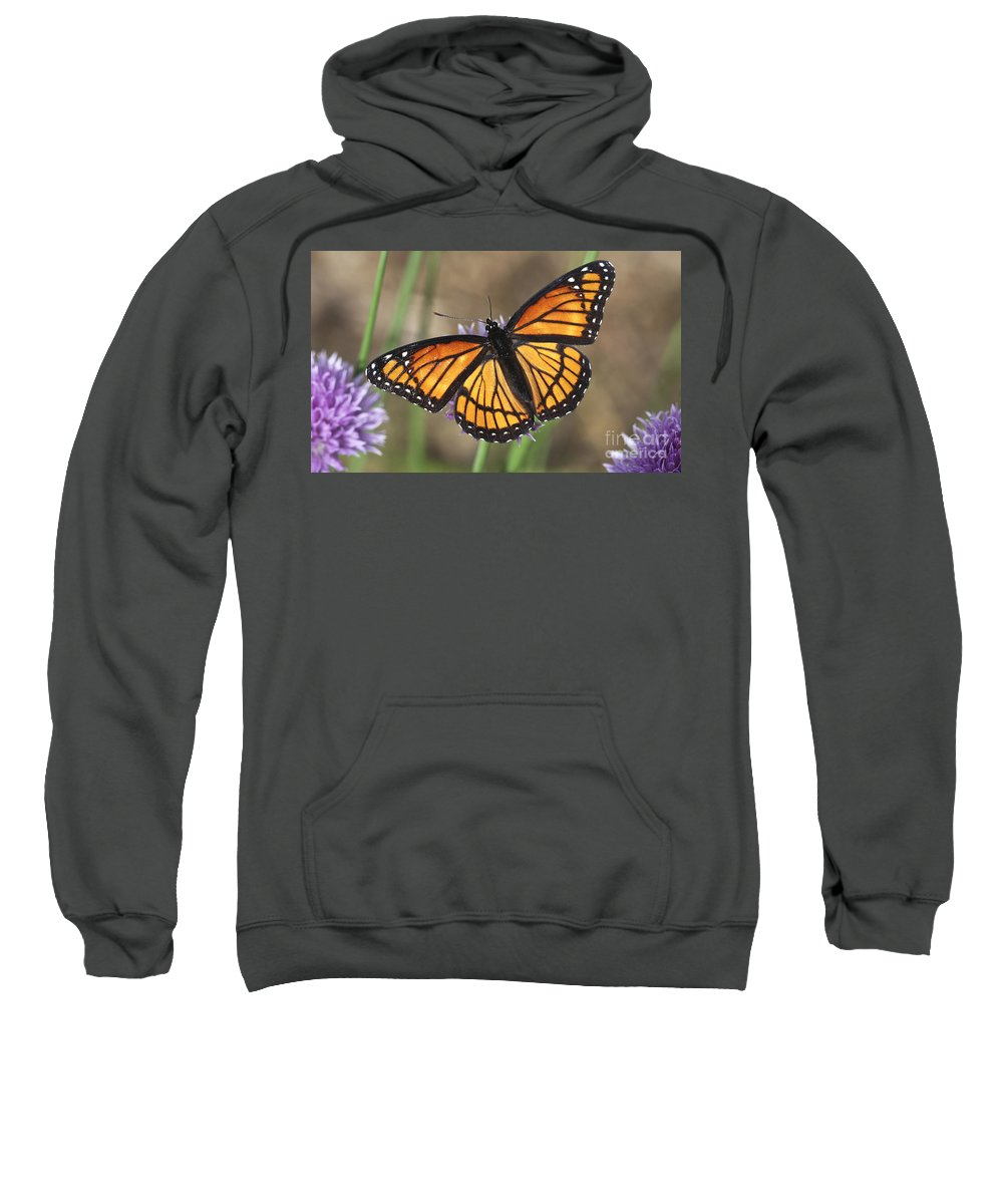 Sweatshirt featuring the photograph Beauty With Wings by Deborah Benoit