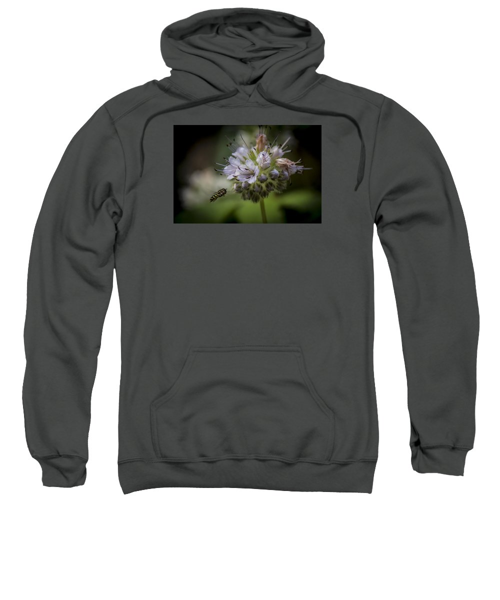 Sweatshirt featuring the photograph Bee 4 by Reed Tim