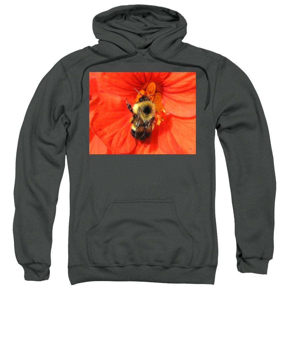 Bee Sweatshirt featuring the photograph Bee And Nasturtium by Will Borden