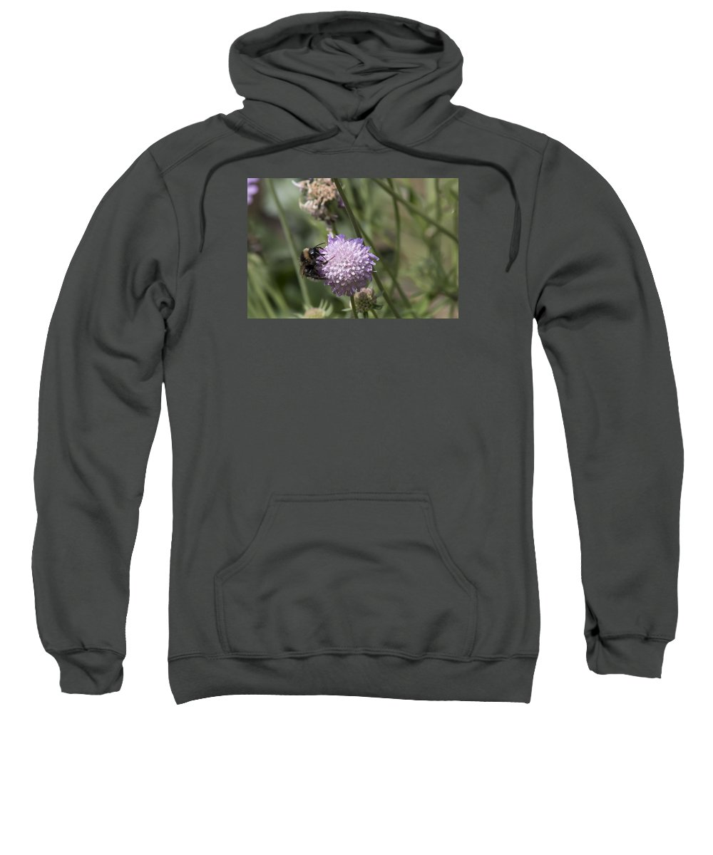 Bee Sweatshirt featuring the photograph Bee On Flower 5. by Les OGorman