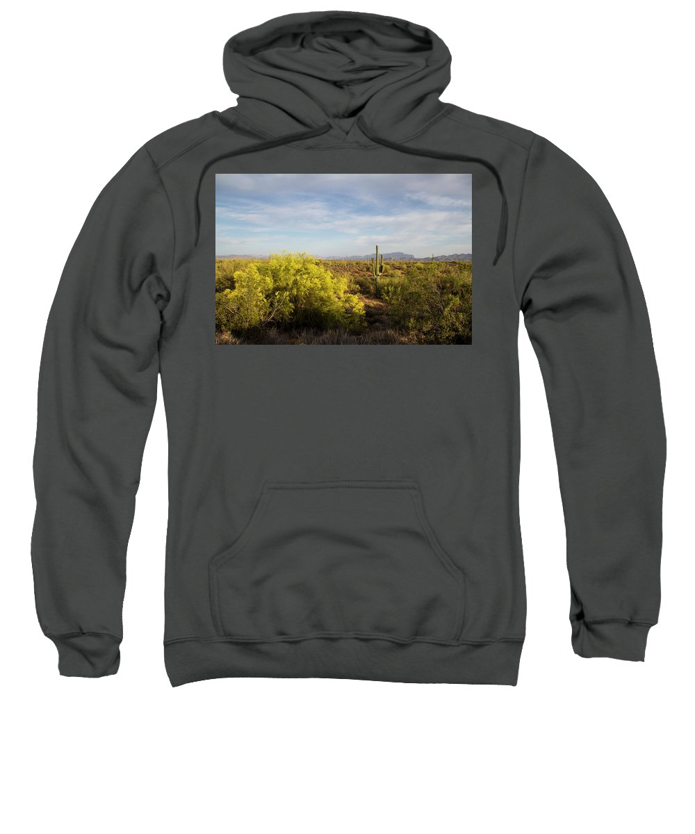Arizona Sweatshirt featuring the photograph Beeline Bloom by Cathy Franklin