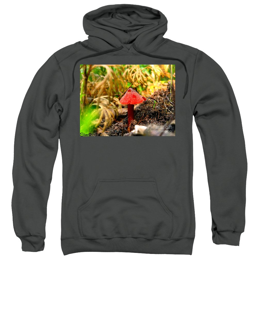 Mushroom Sweatshirt featuring the photograph Before The Trip by September Stone
