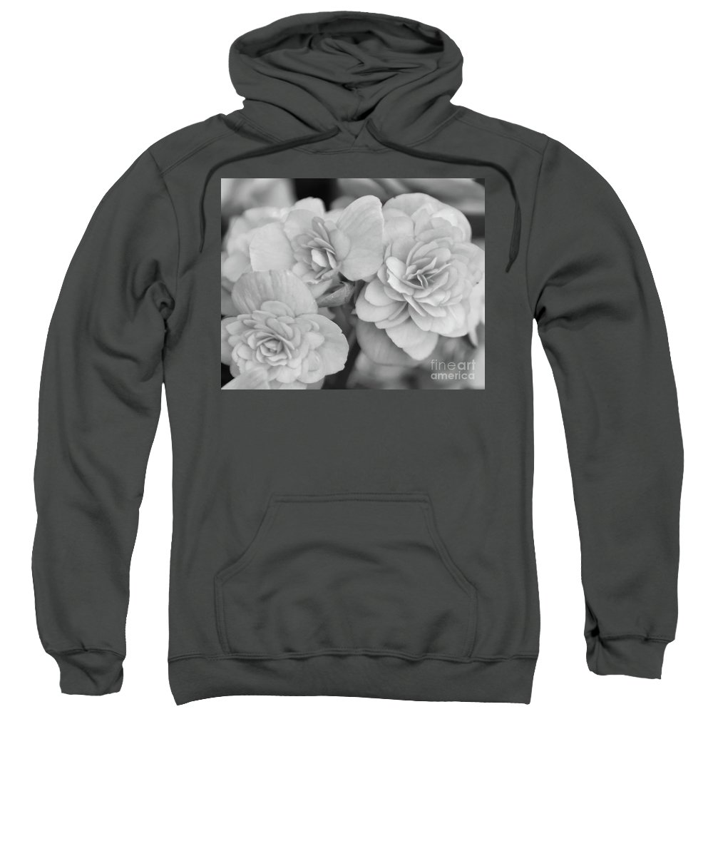 Begonia Sweatshirt featuring the photograph Begonias In Black And White by Olga Hamilton